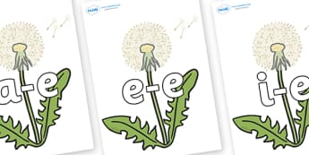 Modifying E Letters on Dandelion-Seeds - Modifying E, letters, modify, Phase 5, Phase five, alternative spellings for phonemes, DfES letters and Sounds