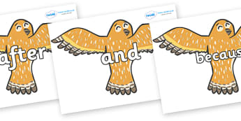 Connectives on Owls - Connectives, VCOP, connective resources, connectives display words, connective displays