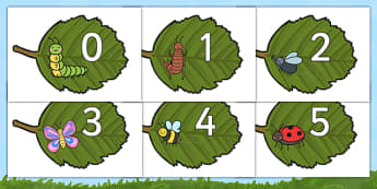 Numbers 0-30 on Minibeasts - Foundation Numeracy, Number recognition, Number flashcards
