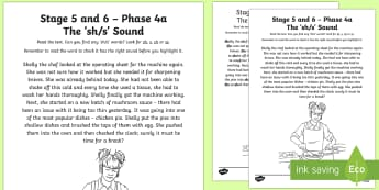 Northern Ireland Linguistic Phonics Stage 5 and 6 Phase 4a 'sh/s' Sound Text Activity Sheet