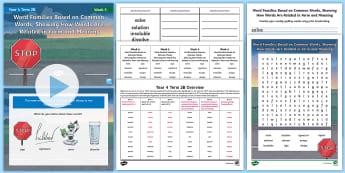 Year 4 Term 2B Week 5 Spelling Pack - Spelling Lists, Word Lists, Spring Term, List Pack, SPaG
