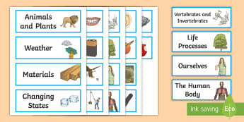 Science Topic Labels - science, topic labels, science, subject, school, area, label, cupboard, Resource Labels, Name Labels, Editable Labels, Drawer Labels, Coat Peg Labels, Peg Label, KS1 Labels, Foundation Labels, Foundation Stage Labels, Tea