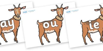 Phase 5 Phonemes on Medium Billy Goats - Phonemes, phoneme, Phase 5, Phase five, Foundation, Literacy, Letters and Sounds, DfES, display