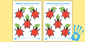 Ladybird Fingerprint Counting Worksheet / Activity Sheet Pack - EYFS activities, number, EAD, minibeasts, insects, worksheet