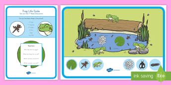 Frog Life Cycle Can You Find...? Poster and Prompt Card Pack - Pond Unit, Pre-K Science, Early Childhood Science, Habitats, Early Childhood Life Science, Frog Life