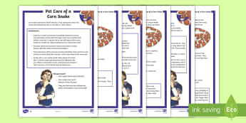 KS2 Pet Care of a Corn Snake Differentiated Fact File - KS2, comprehension, reading, reading comprehension, reading activity, fact file, snake, corn snake,