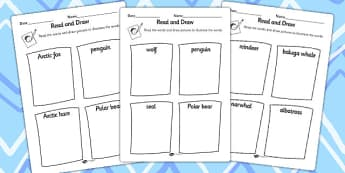 Polar Animals Read and Draw Worksheets - worksheet, drawing