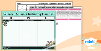 Science: Animals Including Humans Year 2 Unit Assessment Pack