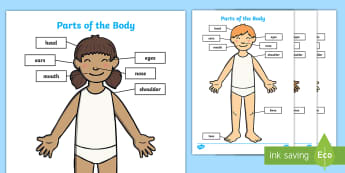 EAL My Body Primary Resources - EAL, my body, ourselves