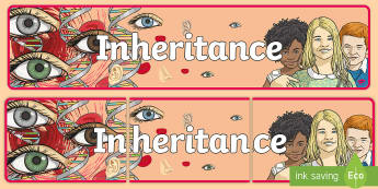 Inheritance Banner - CfE Science, science week, Edinburgh Science Festival, Glasgow Science Festival, Scottish Science Fe