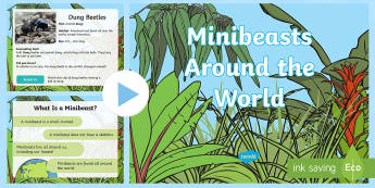 KS1 Minibeasts PowerPoint - Year One, Year 1, Y1, Year Two, Year 2, Y2, EYFS, early years foundation stage, reception, primary,