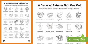 A Sense of Autumn Odd One Out Activity Sheet - seasons, weather, Aistear, exploring, my, worksheet, world, story, odd, one, out, classification, or