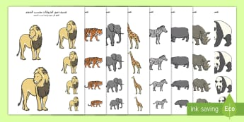 تصنيف الحيوانات بحسب الحجم Arabic - السنوات الأولى، المرحلة الأساسية الأولى، حديقة الحيوا
