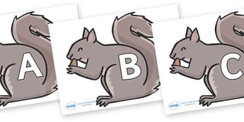 A-Z Alphabet on Grey Squirrels - A-Z, A4, display, Alphabet frieze, Display letters, Letter posters, A-Z letters, Alphabet flashcards