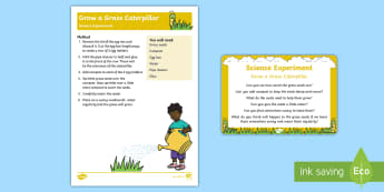 EYFS Grow a Grass Caterpillar Science Experiment and Prompt Card Pack - The Crunching Munching Caterpillar, Sheridan Cain, life cycle of a butterfly, Eric Carle, caterpilla