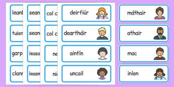 My Family Word Cards Gaeilge - gaeilge, my family, word cards, word, cards, family