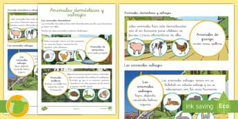 Hoja informativa: Animales domésticos y salvajes - animales, clasificación, domésticos, salvajes, dónde viven,Spanish