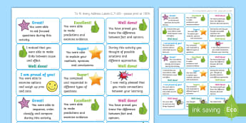 NI Thinking Skills and Personal Capabilities Thinking, Problem Solving, Decision Making Marking Stickers - TSPC, comments, targets, curriculum, statements, Northern Ireland
