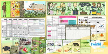 Science: Animals Including Humans Year 1 Unit Pack