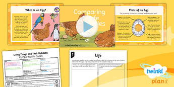 Science: Living Things and Their Habitats: Comparing Life Cycles Year 5 Lesson Pack 6