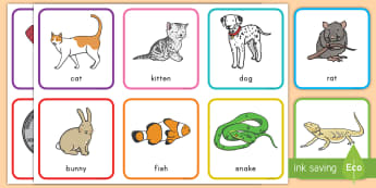Pets Rhyming Pairs Game - rhyming, pets , cards, pairs, phonics, key words, vocabulary, word sort, word recognition
