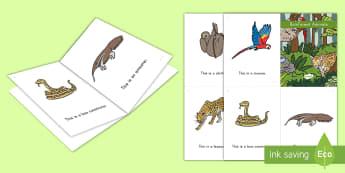 Rainforest Animals Emergent Reader eBook - emergent reader, ebook, rainforest emergent reader, rainforest ebook, rainforest animals, pre-k lite