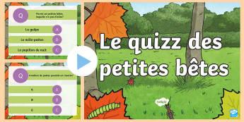 PowerPoint : le quizz des petites betes - French
