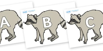 A-Z Alphabet on Racoons - A-Z, A4, display, Alphabet frieze, Display letters, Letter posters, A-Z letters, Alphabet flashcards