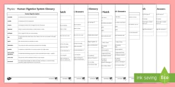 Organisation Glossary and Glossary Activity - KS4 Glossary, Benign, Malignant, Digestive System, Blood, Heart, Circulatory System, Veins, Arteries