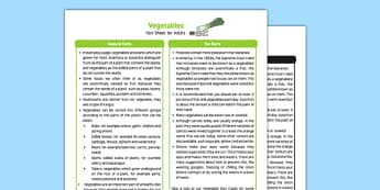 Vegetables Fact Sheet for Adults - EYFS, Early Years, KS1, Key Stage 1, plants, growth, growing, science, understanding the world