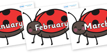 Months of the Year on Ladybirds - Months of the Year, Months poster, Months display, display, poster, frieze, Months, month, January, February, March, April, May, June, July, August, September