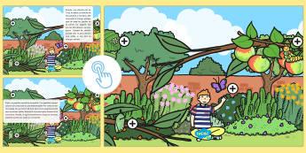 Image à zones intéractives : Le cycle de vie du papillon - cycle de vie du papillon, papillon, cycle de vie, chenille, sciences, insecte, image à zones intér
