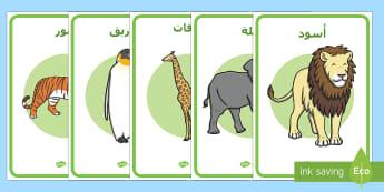 ملصقات الحيوانات في حديقة الحيوانات - حيوانات، الحديقة، حديقة الحيوانات، ملصقات، تمثيل أدوا
