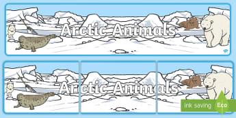 Arctic Animals Display Banner -  - North Pole Role Play Pack, north pole, arctic, santa, winter, role play, polar, snow, christmas, dec