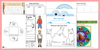 Life Cycles  Activity Pack