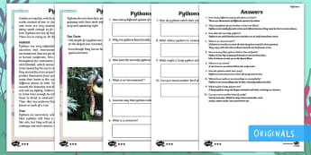 Year 2 Pythons Differentiated Comprehension Go Respond Worksheet / Activity Sheets - pythons, snakes, skin, patterned, pattern, camouflage, camouflaged, ask, answer, questions, find, lo