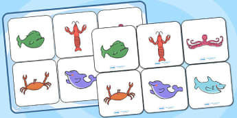 Matching Cards and Board to Support Teaching on Commotion in the Ocean - commotion in the ocean, commotion in the ocean game, commotion in the ocean matching activity, sen
