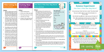 EYFS Bears Science Experiments Resource Pack - Bear, Polar Bear, Brown Bear, Grizzly Bear, Animals, Science, gummy bear, sweets, experiment, invest