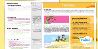 D&T: Edible Garden LKS2 Planning Overview