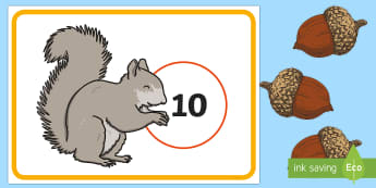 Squirrel and Acorn Counting Game - EYFS, Early Years, KS1, Key Stage 1, Forest, Woodland, Autumn, British Wildlife, Squirrel, Acorns, O