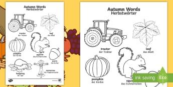 Autumn Themed Words Colouring Activity Sheet English/German - autumn, seasons, weather, EAL, German, English-German,,German-translation