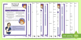 KS2 Pet Care of a Hamster Differentiated Reading Comprehension Activity - KS2, comprehension, reading, reading comprehension, reading activity, hamster, pet, pets, caring for