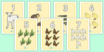 Spring Number Posters - numbers, numeracy, spring, poster, sign, display, matching, number regocnition, counting, flowers, blossom, seasons, sun