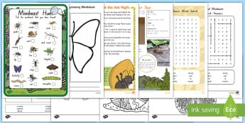 New Zealand Minibeasts Reliever's Activity Pack - bugs, weta, relievers, butterfly, life cycle