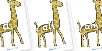 Foundation Stage 2 Keywords on Giraffes - FS2, CLL, keywords, Communication language and literacy,  Display, Key words, high frequency words, foundation stage literacy, DfES Letters and Sounds, Letters and Sounds, spelling