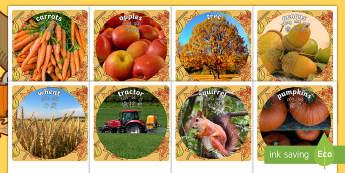 Autumn Display Photo Cut-Outs English/Mandarin Chinese/Pinyin - Autumn Display Photo Cut Outs - seasons, weather, cutout, display, autmn, autunm, atumn, waether, au