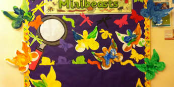 Minibeasts Display With Butterflies, class displays,  creative, Butterflies, colour, creative, Early Years (EYFS), KS1 & KS2 Primary Teaching Resources