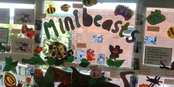 Minibeasts Display, class display, Minibeast, Butterflys, Insects, classroom display, childrens display, Early Years (EYFS), KS1 & KS2 Primary Resources