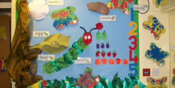 Minibeats Class Display, class display, Minibeasts, Caterpillar, Classroom Display, Butterfly, Display, Early Years (EYFS), KS1 & KS2 Primary Resources