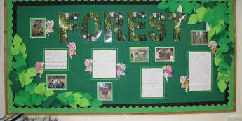 Geography, Forest, Trees, Leaves, Wood, Woodlands, Woods, Creatures, Display, Classroom Display, Early Years (EYFS), KS1 & KS2 Primary Teaching Resources